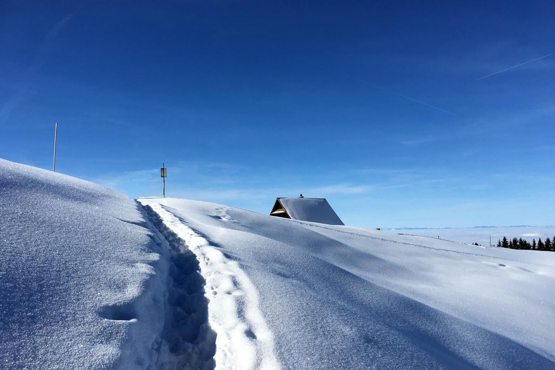 Verschneiter Spazierweg rund um Merlischachen für das Package